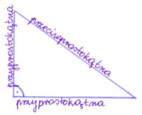 trójkąt prostokątny z nazwami boków