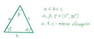 trójkąt ostrokątny